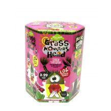 """Набір креативної творчості """"Grass Monsters Head"""", Danko Toys, GMH-01-05U"""